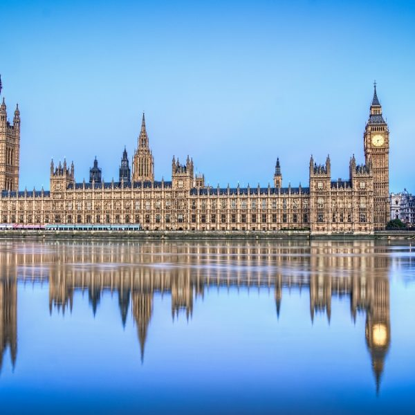 Bacta Parliament Lord Chadlington
